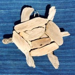 Image of Driftwood Turtle