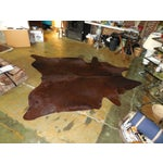Image of Large Chocolate Brown Cowhide Rug - 7′7″ × 8′10″