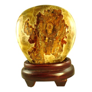 Chinese Polished Petrified Wood on Stand