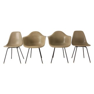 Eames Fiberglass Shell Chairs - Set of 4