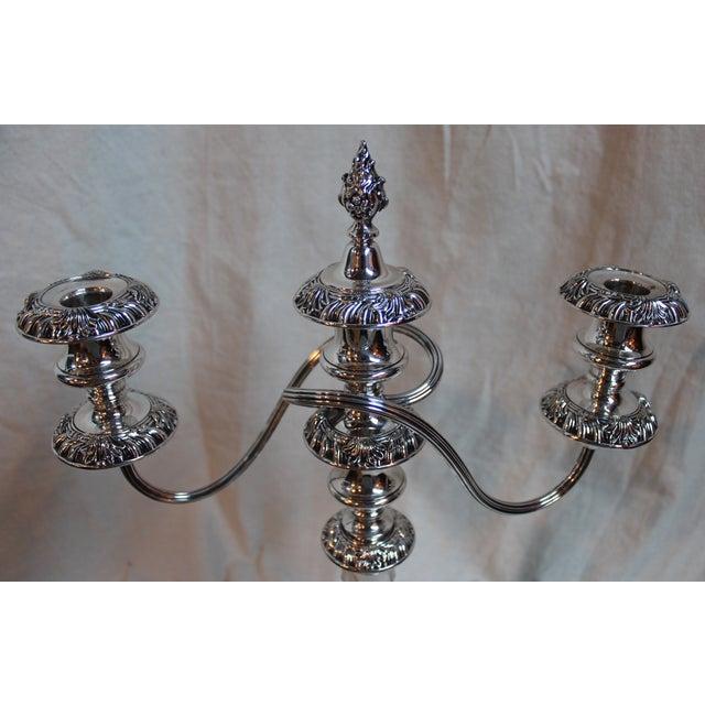 Image of Three-Light Candelabras - A Pair