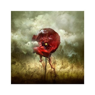 War Poppy 2, 2015 by Giles Revell