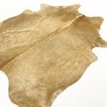 "Image of Palomino Natural Cowhide Rug - 5'8"" x 7'"