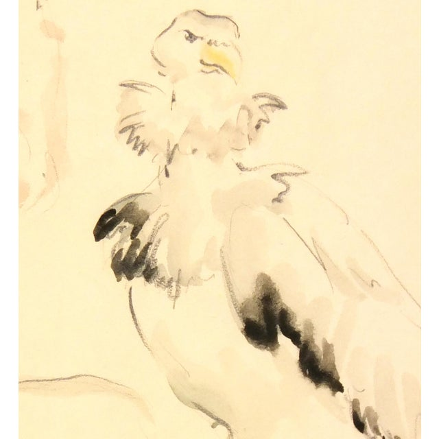 Image of Vintage Watercolor Animal Study, C. 1920