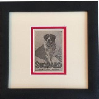 Vintage 1927 Italian Saint Bernard Suchard Ad