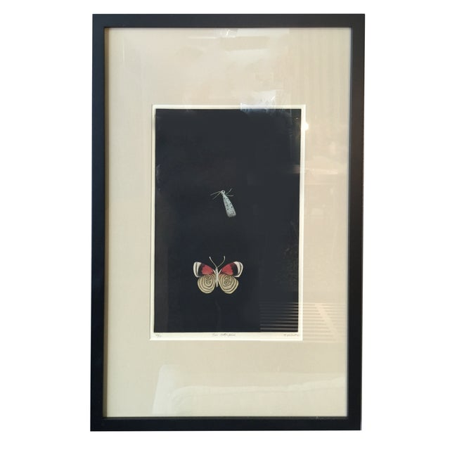 """Two Butterflies"" by Tomoe Yokio - Image 1 of 5"