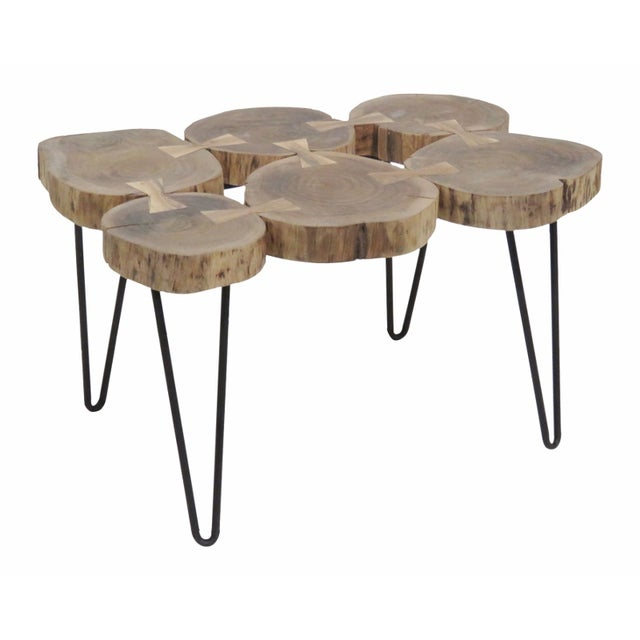 Image of Cut Trunk Slab Coffee Table