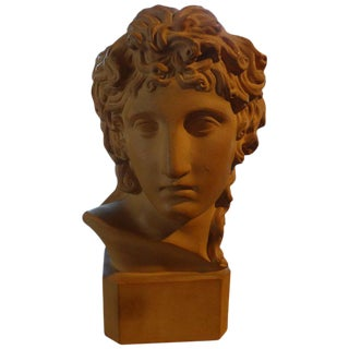 French Classical Terra Cotta Bust, Signed R. d'Arly Paris
