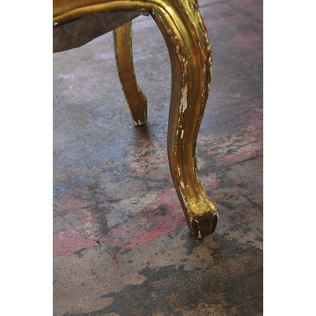 Louis XVI Style Giltwood Chairs - Set of 4 - Image 8 of 11