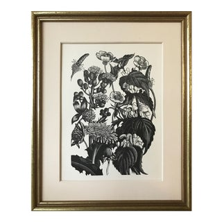 Botanical/ Garden Woodblock by Clare Leighton