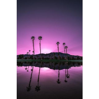 Jason Mageau Purple Palm Springs Photograph