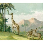 Image of African Animals, 1886 Chromolithograph