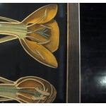 Image of Framed Vintage Botanical