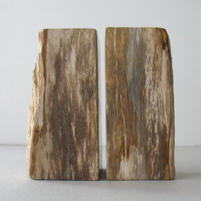 Petrified Wood Bookends - Pair - Image 2 of 9