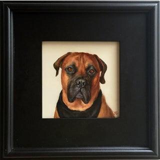 Boxer Dog Oil Portrait