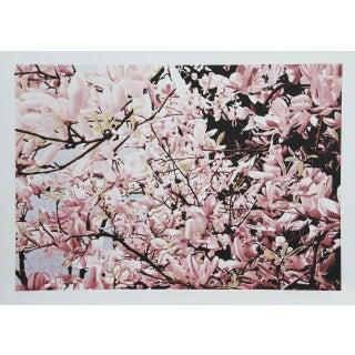 """Jon D'Orazio, """"Magnolia II,"""" Lithograph"""