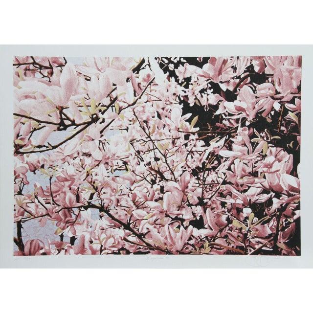"""Image of Jon D'Orazio, """"Magnolia II,"""" Lithograph"""