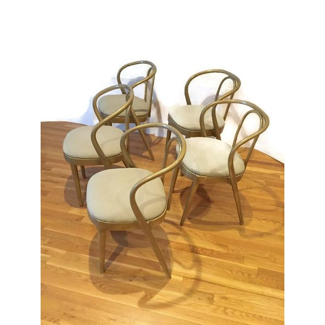 Vintage Modern Bentwood Dining Chairs - Set of 5 - Image 6 of 11