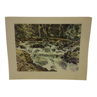 "Phil Austin ""Soleduck Rapids"" United Airlines Print"