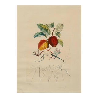 Photolithography FlorDali / Les Fruits by Salvador Dali, 1968