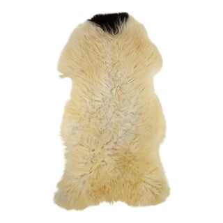 Off White & Black Sheepskin Rug - 2′4″ × 3′10″