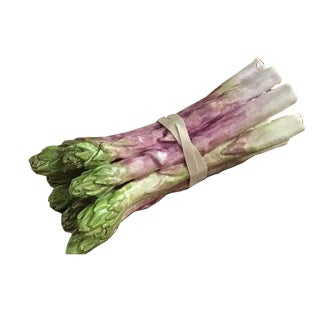 Porcelain Bundle of 8 Asparagus