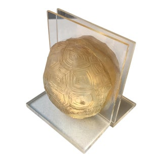 Lucite Tortoise Shell Bookends