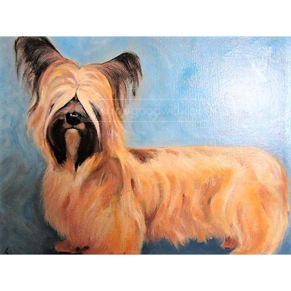 Yorkshire / Skye Terrier Acrylic Painting - Image 3 of 10