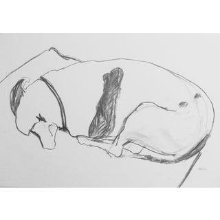 """Terrier Asleep"" Charcoal Drawing"