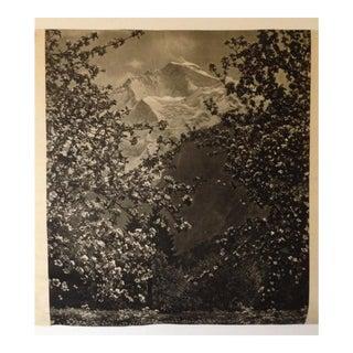Vintage Black & White Print