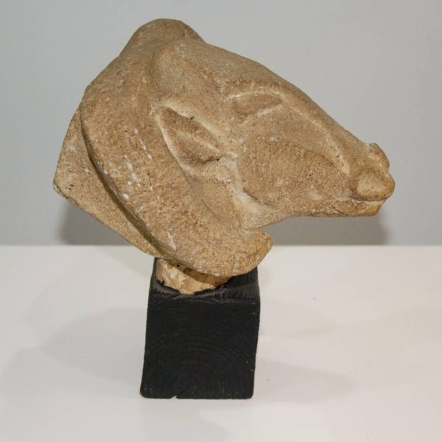 Richmond Professional Institute Limestone Ram's Head Sculpture - Image 2 of 9