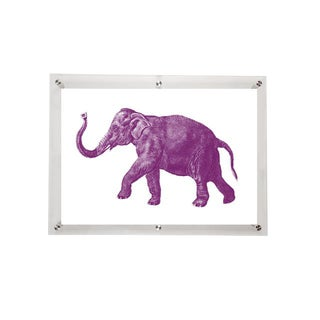 Mitchell Black Home Acrylic Framed Elephant Art Print