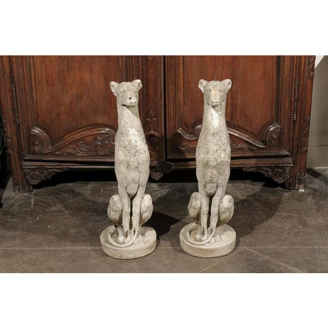 Pair of Vintage Carved Cement Greyhound Sculptures Sitting on Circular Bases - Image 9 of 9