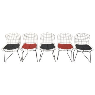Knoll Bertoia Child Size Chairs - Set of 5