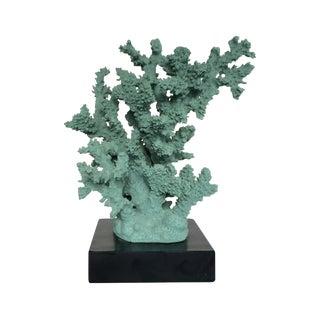 Vintage Blue Coral Mounted on Black Base