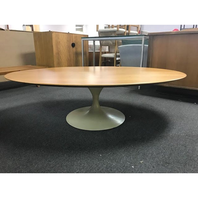 Cb2 Mid Century Coffee Table: Mid-Century Wood Oval Tulip Base Coffee Table