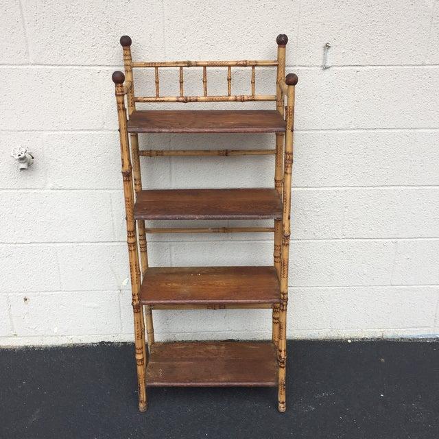Antique English Burnt Bamboo Tortoise Shelf Chairish