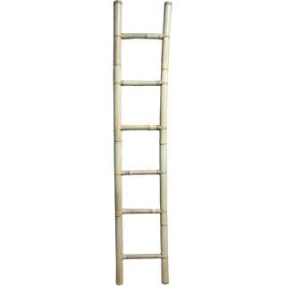 Natural Wood Ladder