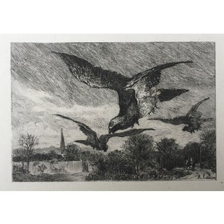 19th Century French Bird Etching by Lançon