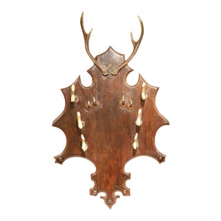 19th Century French Black Forest Carved Coat Rack