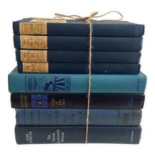 Set of 8 Classic Novels, Blue