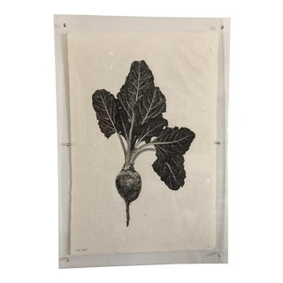 "Lucite Framed ""Red Beet"" Print"