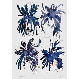 Indigo Peacock Specimen Sheet