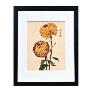 "Chrysanthemum Giclée Print Titled ""Soulful"""