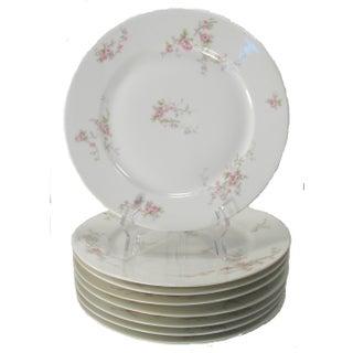 Antique Haviland Limoges Plates - Set of 8