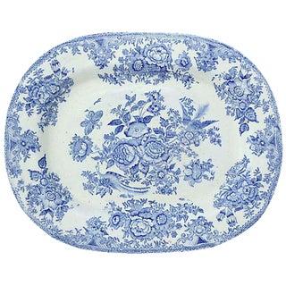 Antique English Asiatic Pheasant Platter