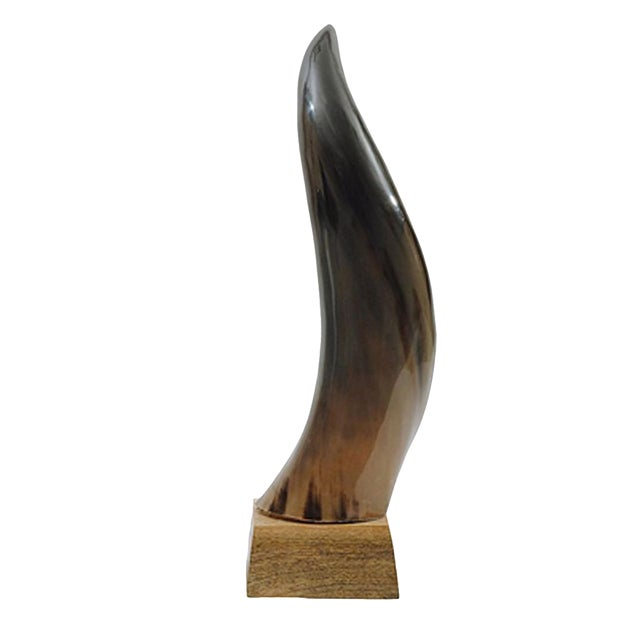 Horn on Mango Wood Base - Image 1 of 2