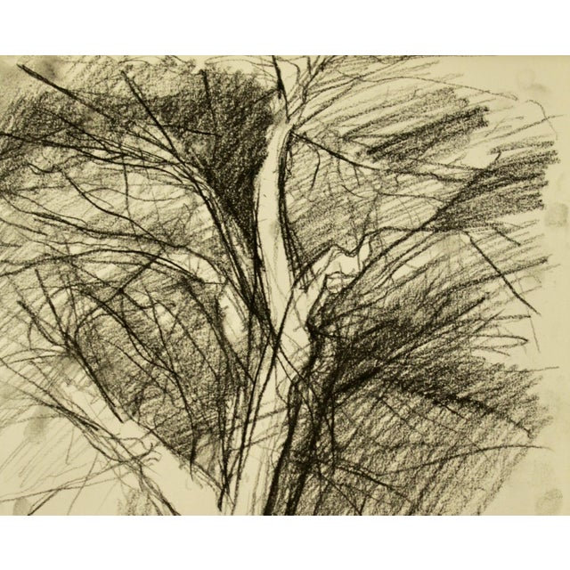 """Image of """"Tree in Winter"""" Drawing"""