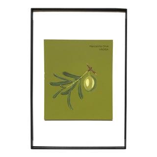 """Manzanilla Olive"" Acrylic Painting"