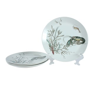 Johnson Bros. Fish Plates Series #1 - Set of 4